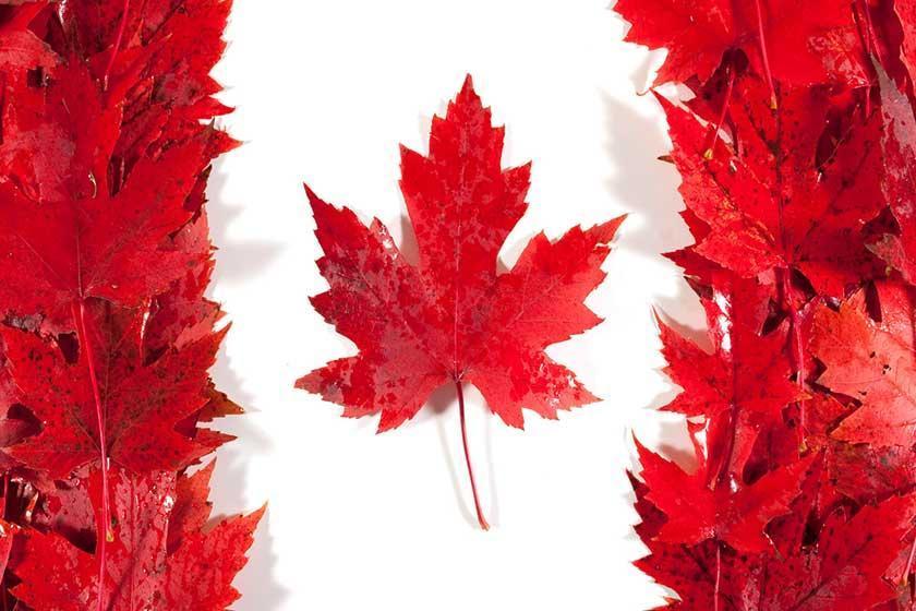 آشنایی با نحوه دریافت ویزای کانادا