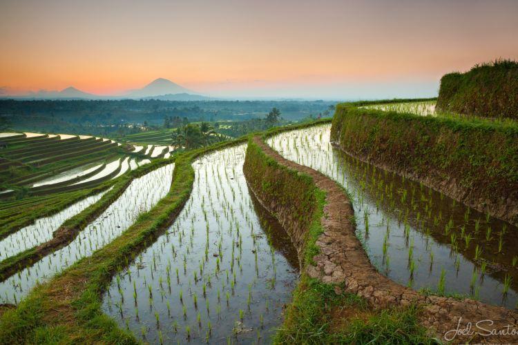 راهنمای سفر به جزایر زیبای اندونزی؛ بالی، لومبوک، جاوه و فلورس