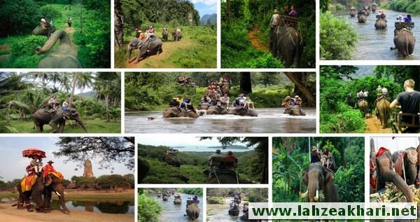 جاذبه های گردشگری و دیدنی پوکت تایلند