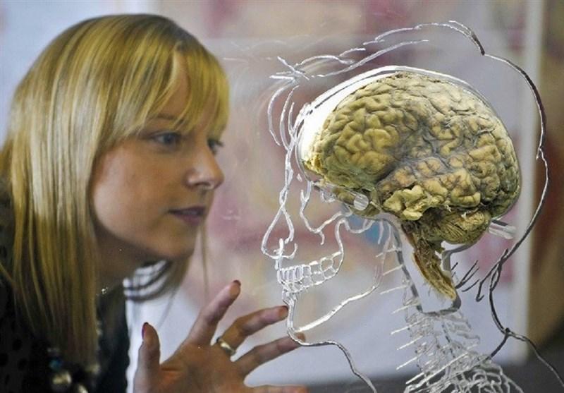 10 باور رایج درباره مغز انسان که اشتباه بودن آن ها ثابت شده است