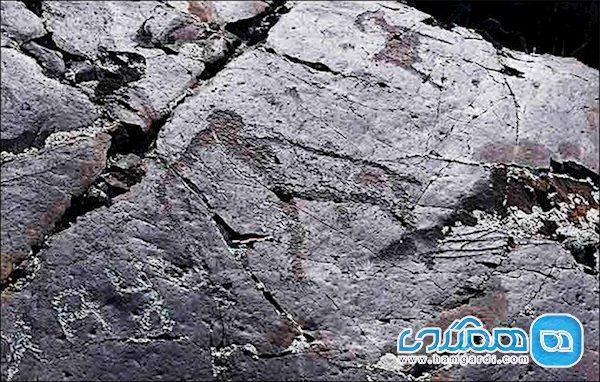 گالری با نقاشی های 15 هزار ساله و اسرارش