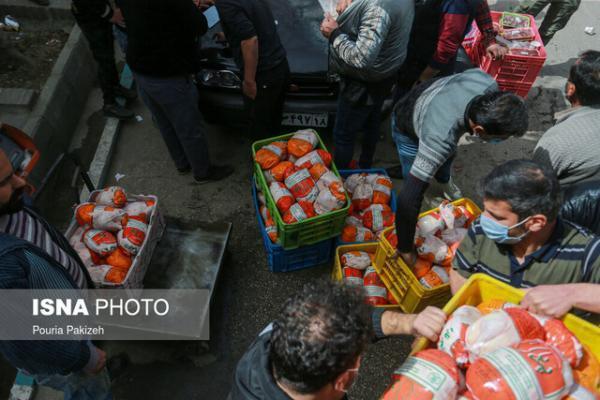 توزیع روزانه 200 تن مرغ گرم در مشهد