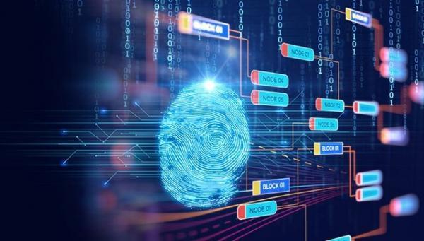 کاهش افشای اطلاعات با نرم افزارهای رمزنگاری بومی